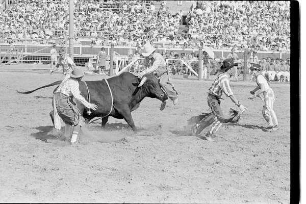 Texas Prison Rodeo; Bull riding.