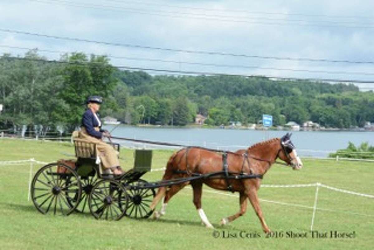Saratoga Driving Association Driving Trial and Combined Test will be Oct. 1 and 2 at Akers Acres, State Farm Road, Valatie. Here, Barbara Akers competes with her horse Colton in a previous event. (Photo submitted)