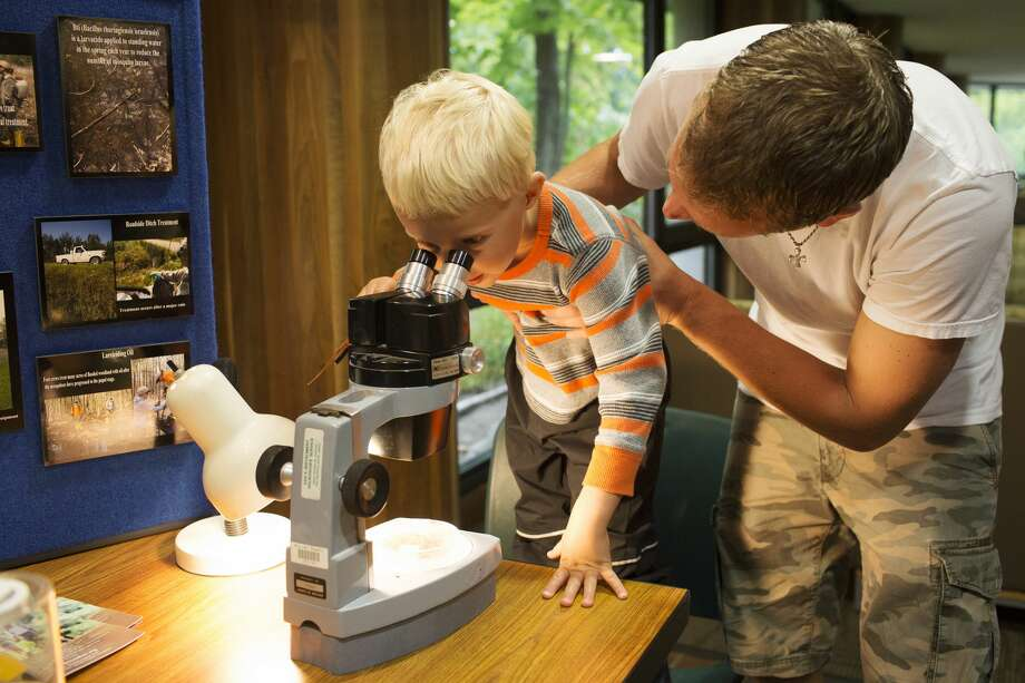 Abe Schuitman, of Midland, helps his son Arie Schuitman, 4, look through a microscope at adult mosquitos during the BioBlitz at the Chippewa Nature Center on Saturday. Photo: Theophil Syslo/for The Daily News