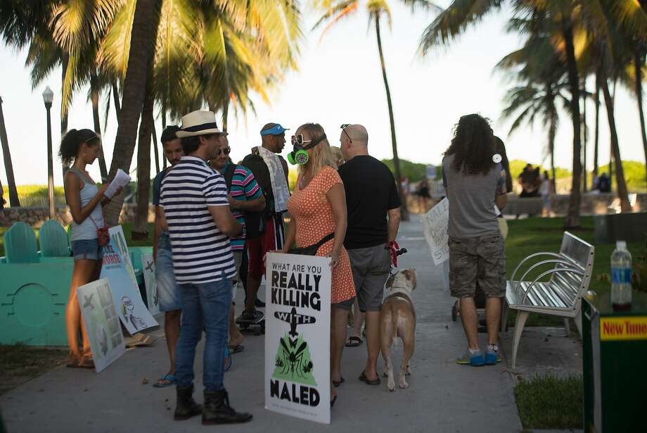 Demonstrators and Miami-Dade County residents during a protest against the spraying of the pesticide naled in Miami Beach, Fla., Sept. 16, 2016. As Miami Beach works to blunt the spread of Zika Ñ a virus that is taking a toll on tourism here Ñ the city is wrestling with a separate predicament: a fast-growing outcry over the aerial spraying of naled, the pesticide used to kill adult mosquitoes. (Max Reed/The New York Times) Photo: MAX REED, NYT