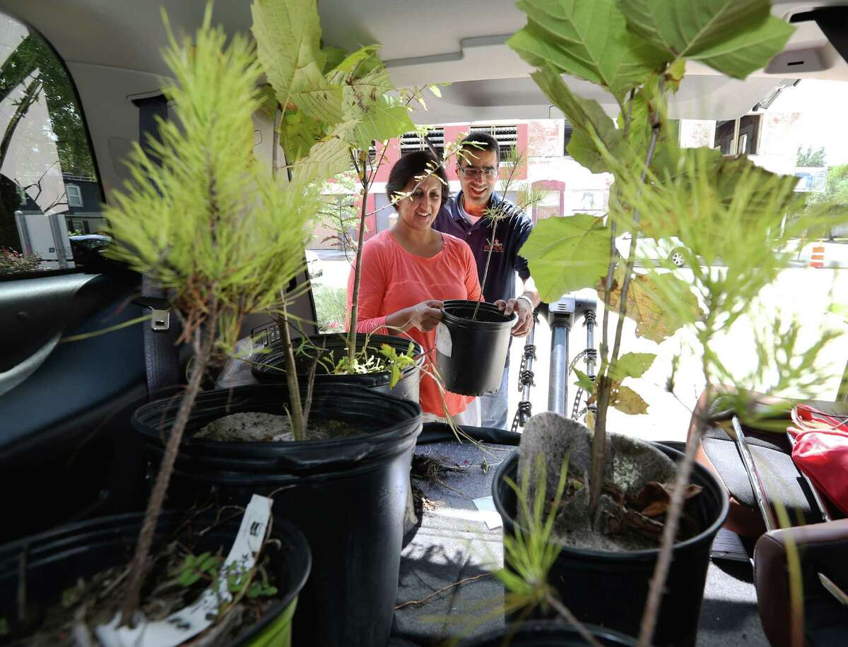 Heights residents Sameera and Ashish Mahendru load six young trees - free from the Houston Heights Association - into their car on Sunday.