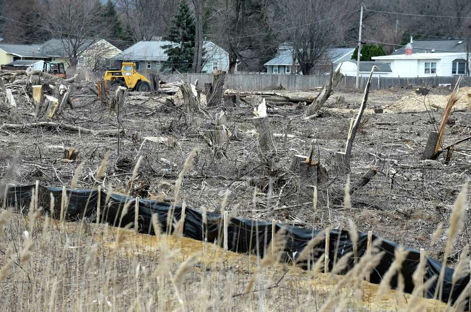 Homes are now exposed, due to mature trees being taken down by developers, on Maxwell Road on Friday, March 25, 2016, in Colonie, N.Y. The Save Colonie's Trees group wants the town to change their approach with development property. (Cindy Schultz / Times Union) Photo: Cindy Schultz / Albany Times Union