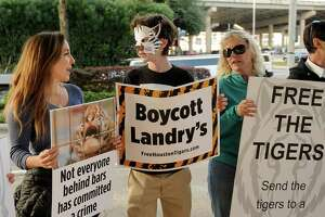 Katya Dow, from left, Lincoln Dow and Cheryl Conley protest outside the Downtown Aquarium in December. Animal rights activists last year launched a petition drive to try to get the tigers removed from the Aquarium.