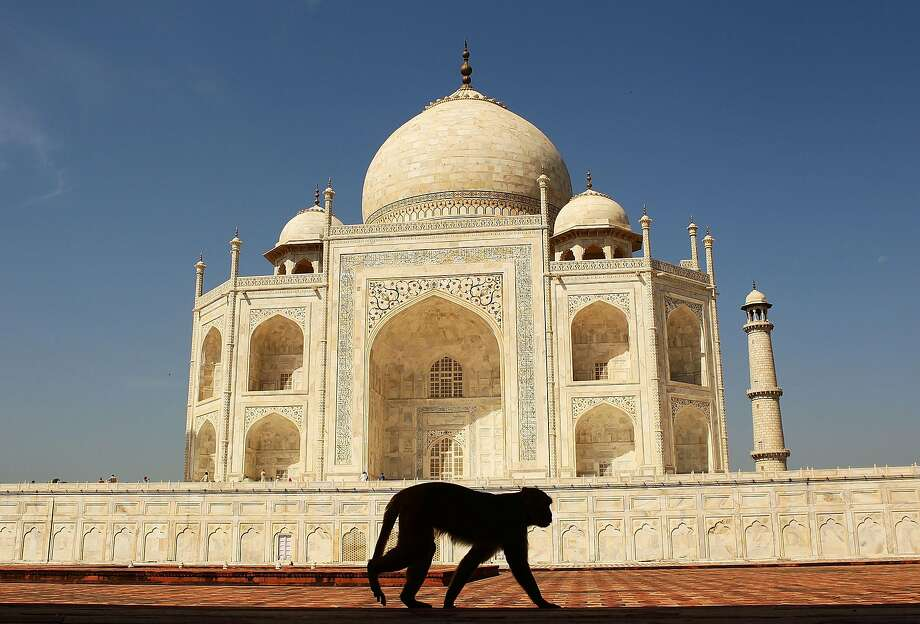 25. IndiaCultural influence:#26Entrepreneurship:#28Power:#16Quality of life:#30 Photo: Matt King, Getty Images