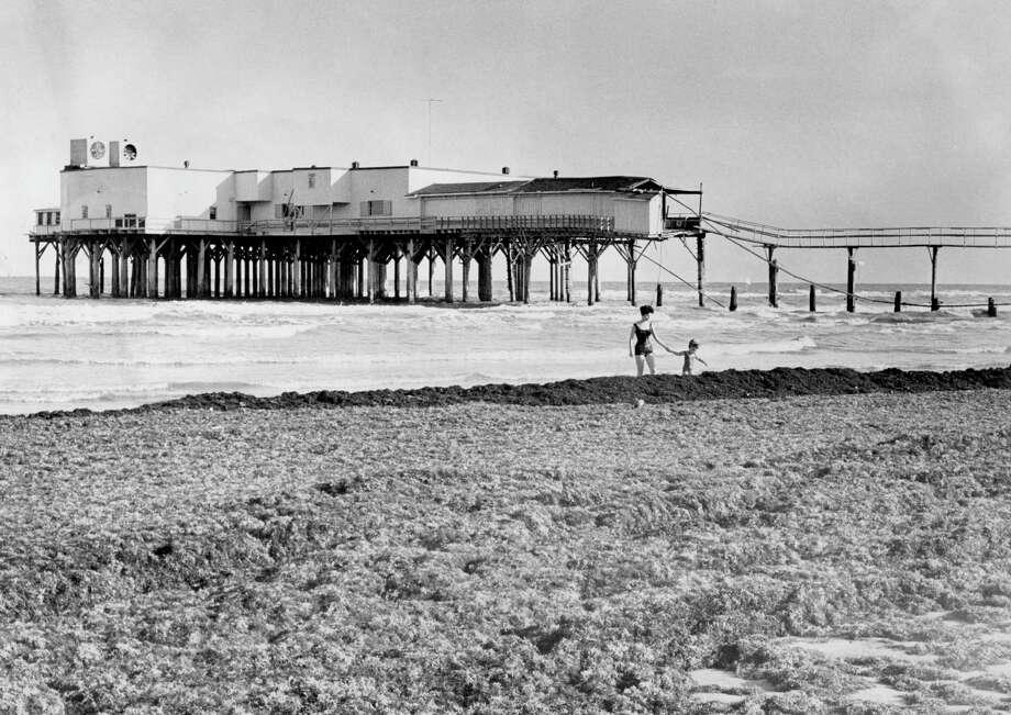 Seaweed on Galveston beach with Hurricane Carla-damaged Balinese Room in background, 1962. Photo: Staff, Houston Chronicle