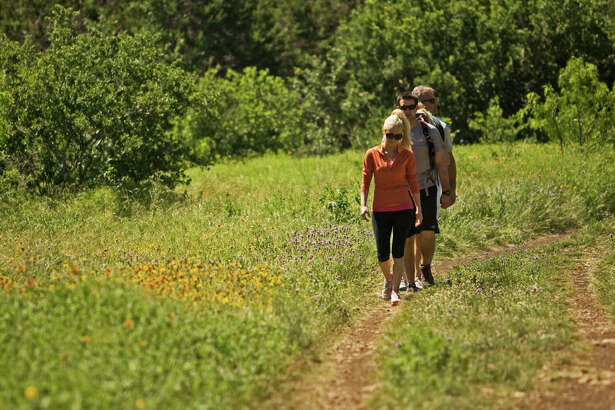 A group of hikers stroll among the wildflowers at Government Canyon State Natural Area.