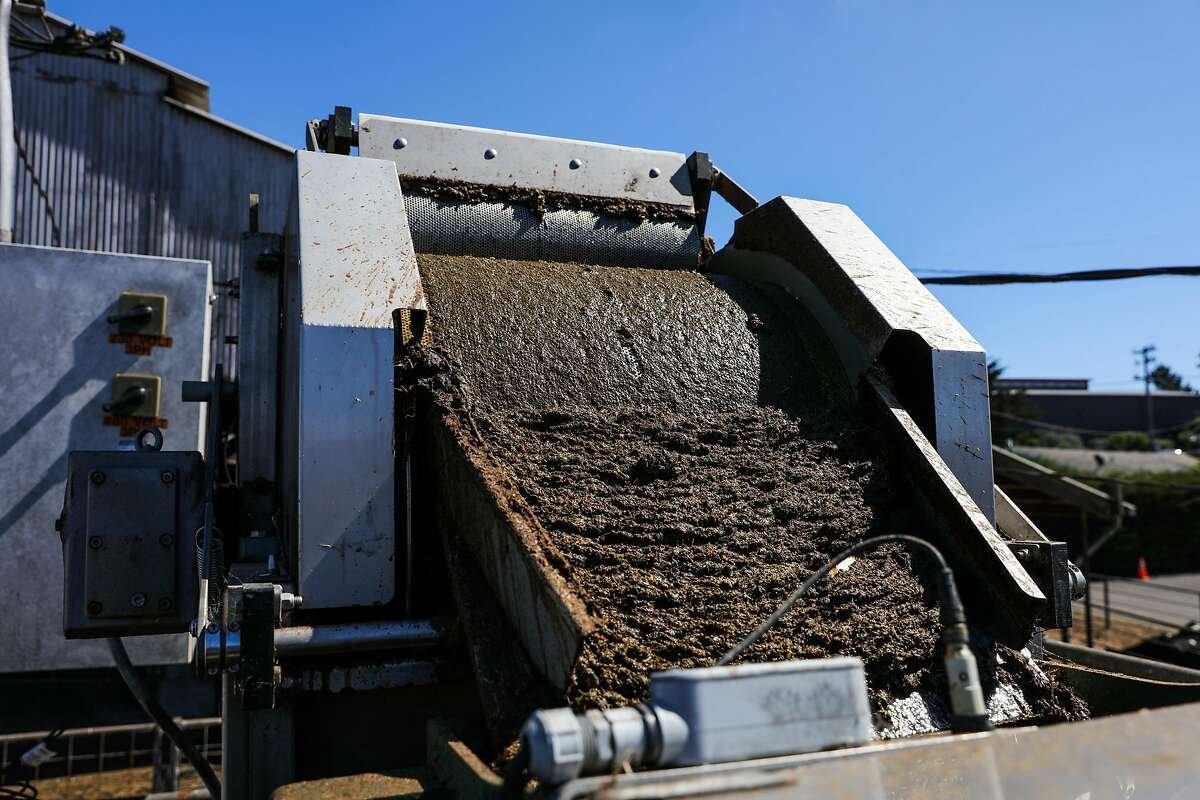 Manure is seen on a conveyor belt as it is separated a by DTX separator at Point Reyes Farmstead Cheese Company, in Marin, California, on Thursday, Sept. 22, 2016.