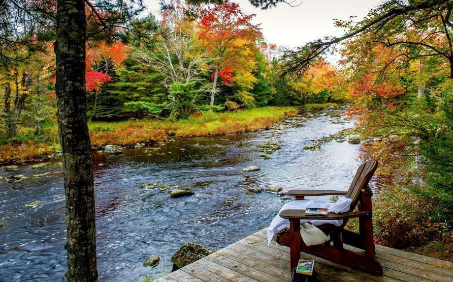 "The Trout Point Lodge in Kemptville, Nova Scotia, offers guided nature walks that are inspired by the Japanese philosophy of ""forest bathing."" Forest bathing experiences encourage participants to slow down and contemplate nature with all their senses as a way of promoting well-being. Photo: AP / Trout Point Lodge, Limited,"