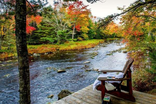 """The Trout Point Lodge in Kemptville, Nova Scotia, offers guided nature walks that are inspired by the Japanese philosophy of """"forest bathing."""" Forest bathing experiences encourage participants to slow down and contemplate nature with all their senses as a way of promoting well-being."""