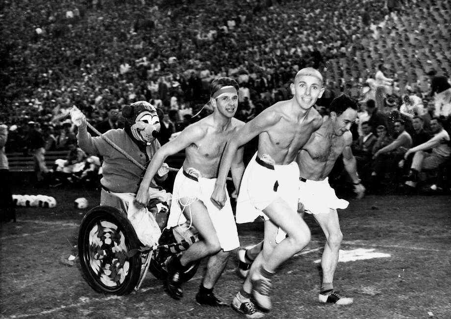Shirtless Cal fans pull Oski in a chariot at the Big Game in 1946. Photo: Unknown