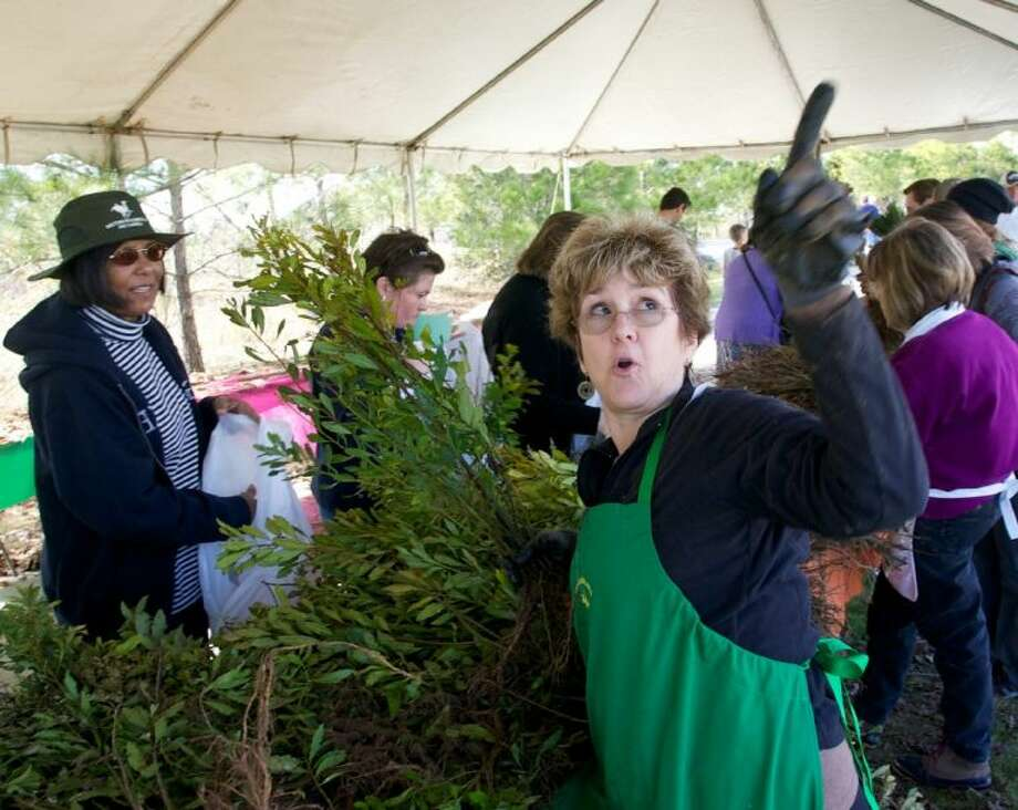Ann Vivverette, with The Woodlands Garden Club, explains to a resident details about the Southern Wax Myrtle during Saturday's annual Arbor Day celebration at Rob Fleming Park in The Woodlands. Photo: Staff Photo By Eric Swist