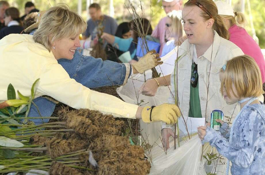 The annual Arbor Day Celebration is scheduled for Saturday, from 10 a.m. until 2 p.m. in the award-winning Rob Fleming Park in The Woodlands' Village of Creekside Park. Approximately 31,000 tree seedlings in eight varieties will be given away free, continuing a 35-year tradition that began in 1977.