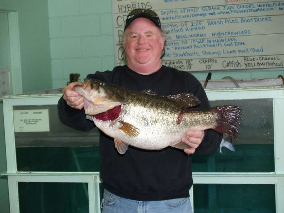 This share lunker caught by Harry Durham in 2006 is the type of black bass one would want for a trophy.