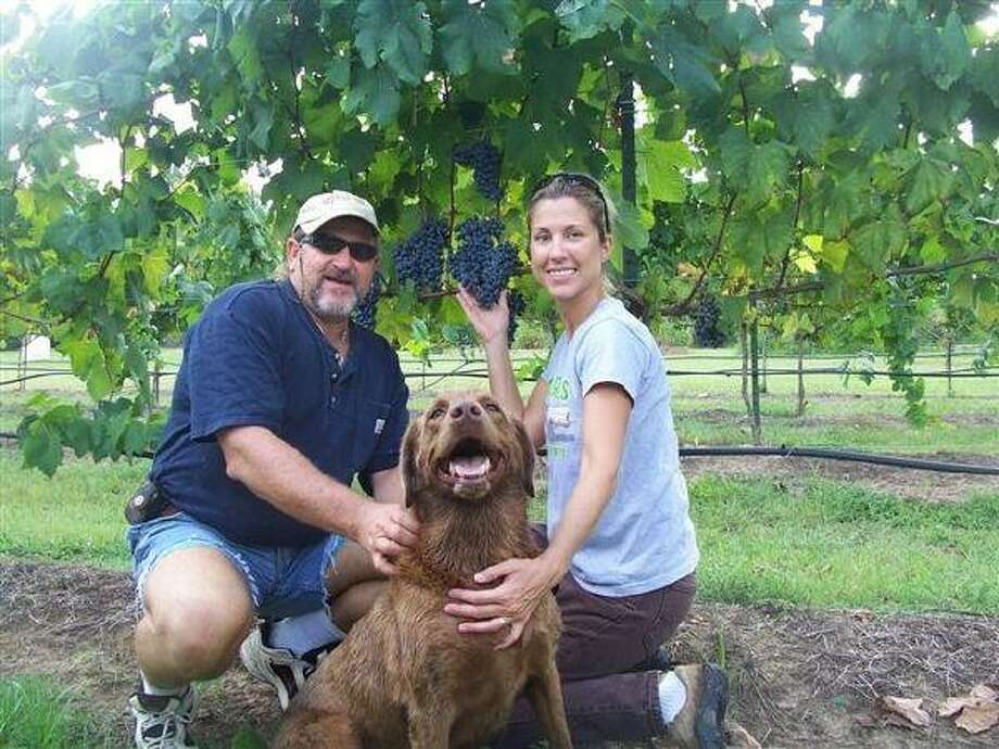 Kelly and Lisa Curtis of Colina Vintoso Vineyards is one of several vineyards in Montgomery County. Their grapes were just harvested and utilized by Bernhardt Winery in the making of a red wine.