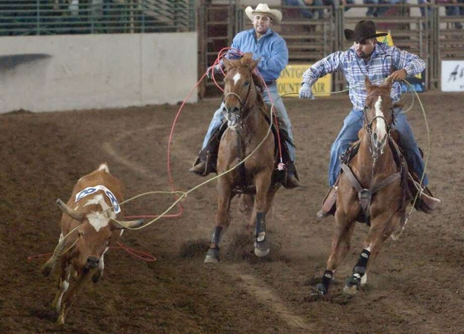 Cattle wranglers lasso a steer during the Ranch Rodeo Sunday at the Montgomery County Fair and Rodeo. Photo: Karl Anderson