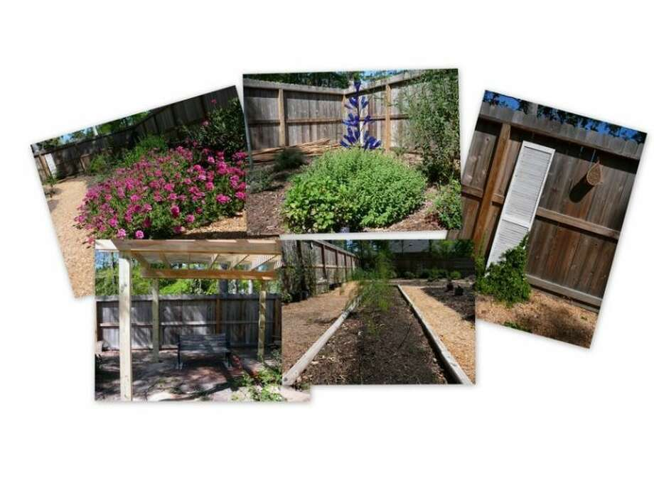 Gardening is a lifelong learning process. Photo: Picasa