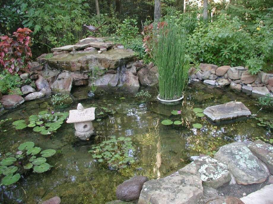 """""""Water gardens,"""" as they are called, can add another dimension to the landscape; expanding the types of plants you grow adding fish and even birds."""