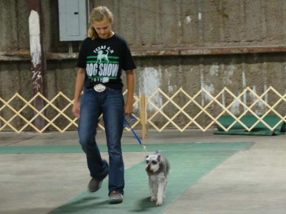 A 4-H students walks her dog at last year's State 4-H Dog Show at the Montgomery County Fairgrounds. This year's event begins Friday and free to the public.