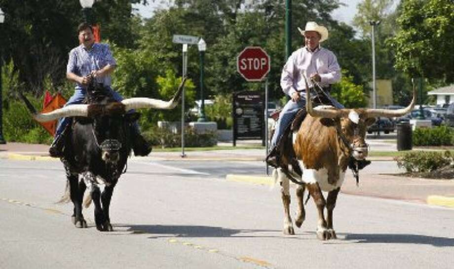 Chuck Bergfeld, left and Johnny Johnson ride a pair of longhorn steers in town for a Ted Cruz fundraiser through the streets of downtown Conroe on Monday.