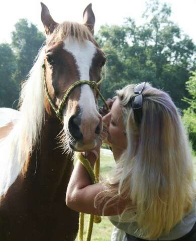 Craigslist ad leads to recovery of stolen horse after missing more