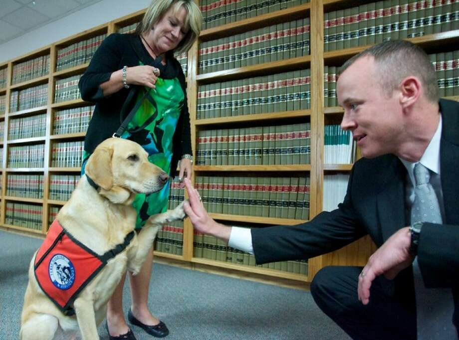 Ranger, a 5-year-old Labrador, high-fives Chief Prosecutor Tyler Dunman as handler Pam Traylor looks on. Ranger acts as a service dog for victims of abuse and violent crimes and helps soothe and relax them when they are speaking with officials or testifying in court Photo: Staff Photo By Eric Swist