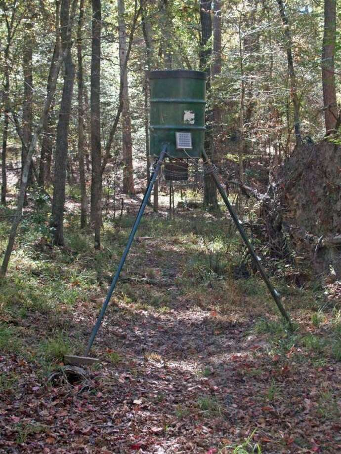 A deer feeder with corn can draw in the game, but noise or odors will drive them away.