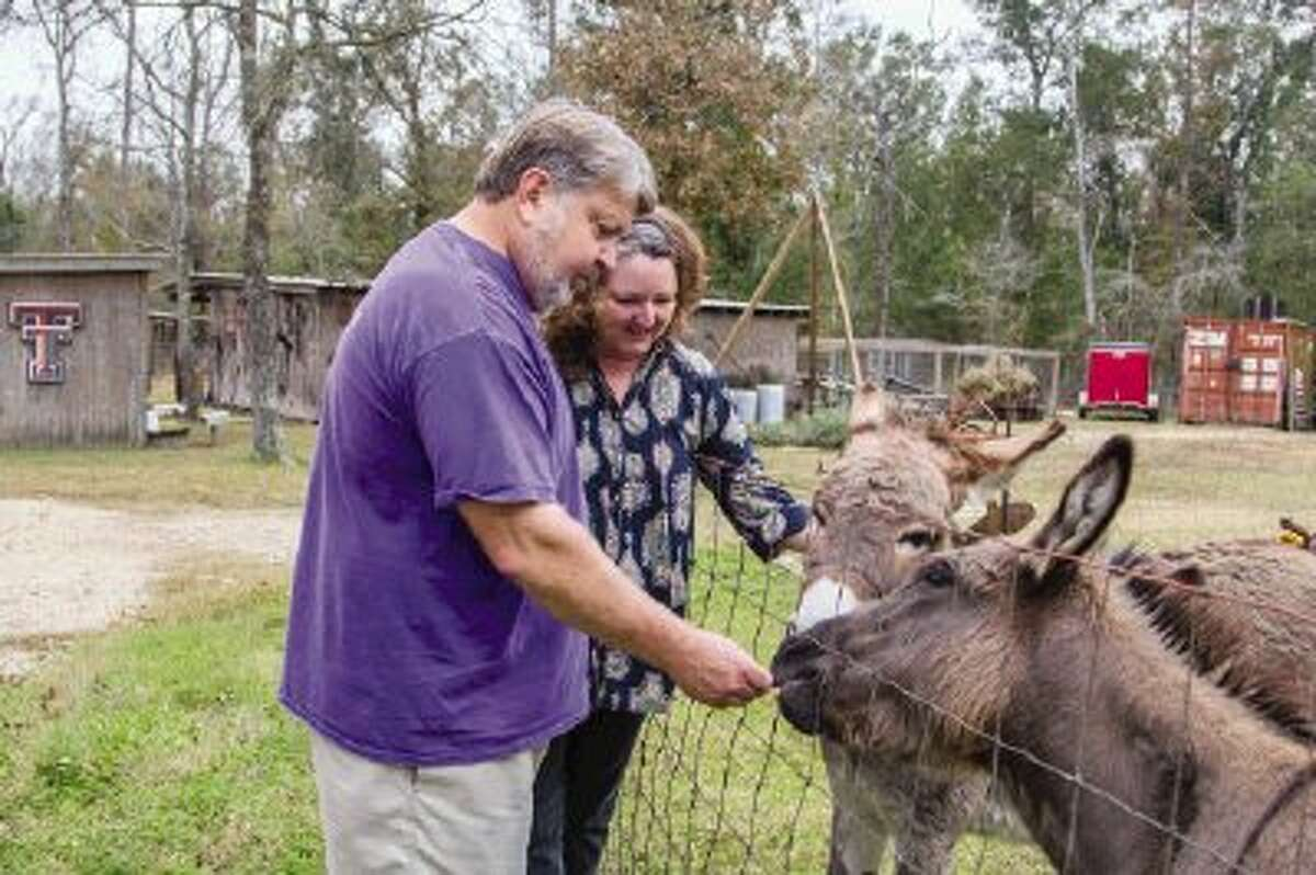 Jim and Lisa Jenkins feed their pet donkeys at Sunshine Farm in Montgomery.