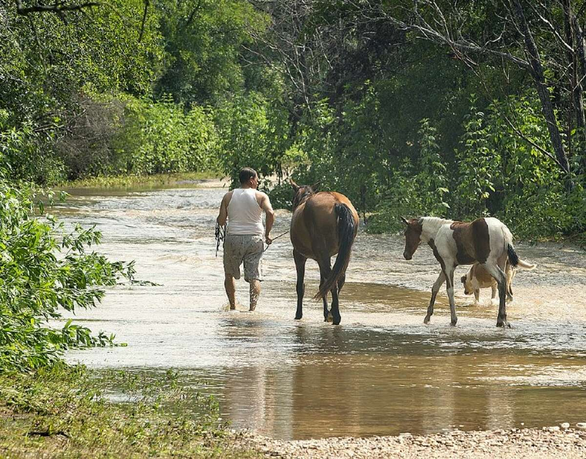 A man walks horses down Comanche Trail in Bastrop County, near Webberville, Texas, Tuesday. Heavy rains caused flooding, forcing the evacuation of some residents and the moving of animals to higher ground.