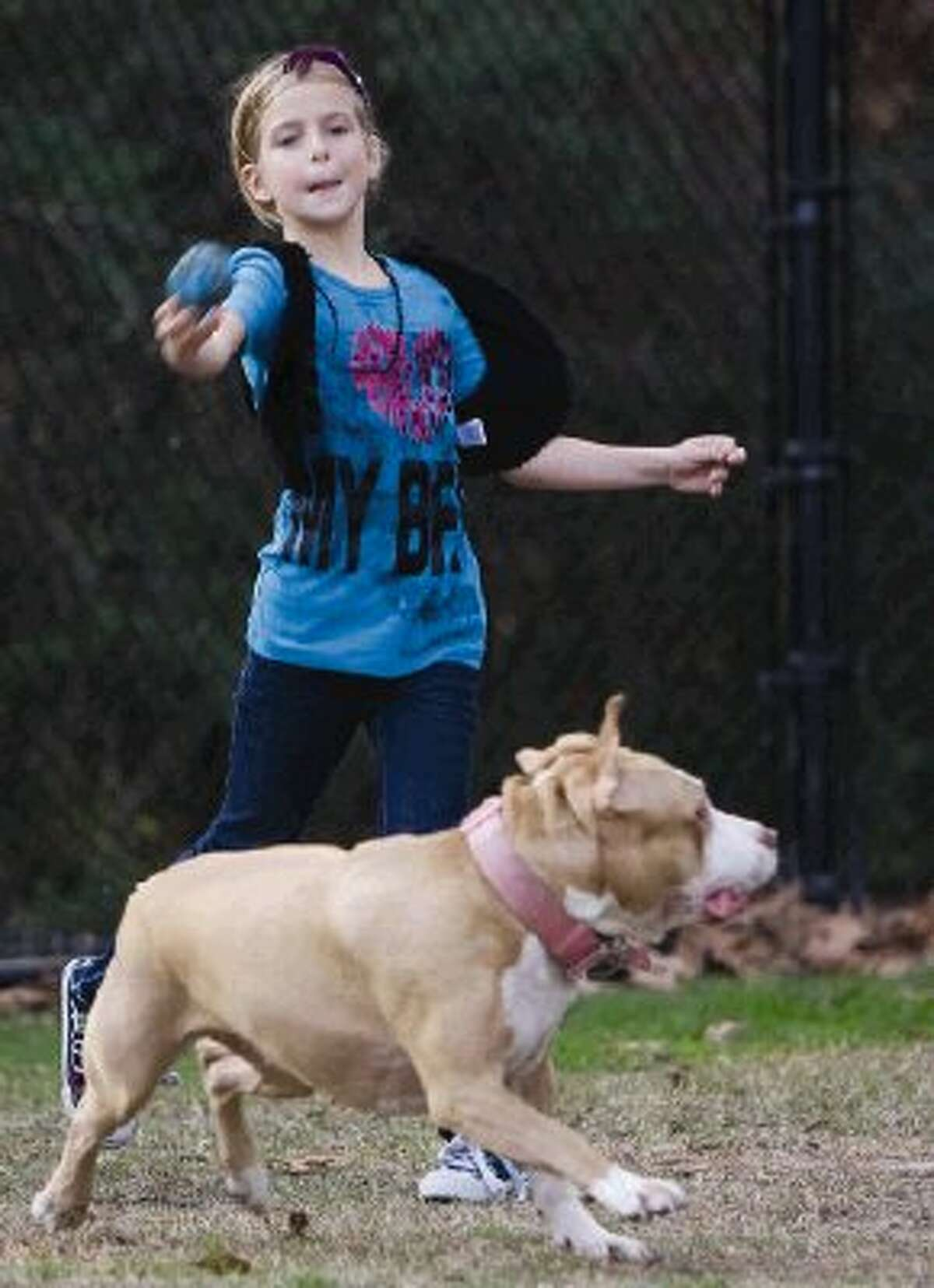 Hayden Ogden, 8, plays with Lady, a pit bull, at a park in The Woodlands on Tuesday.