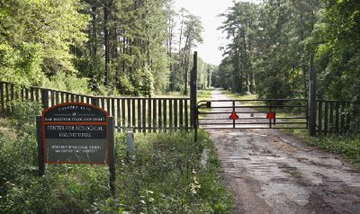 STAFS is located at the Center for Biological Field Studies, a secured 247-acre tract located adjacent to Sam Houston State Forest.