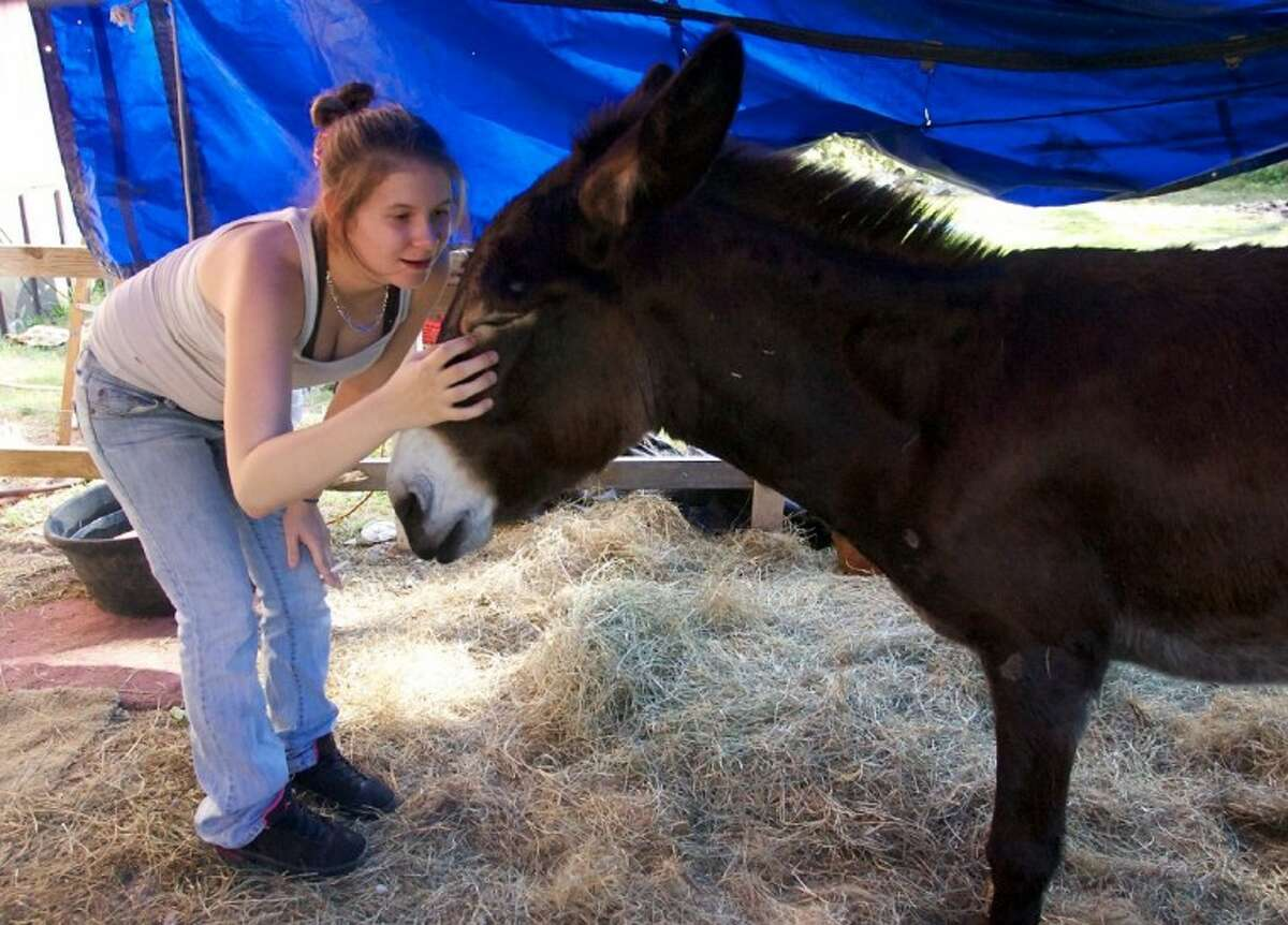 Durena Byrd pets donkey Susie Q at the family's home in New Caney.