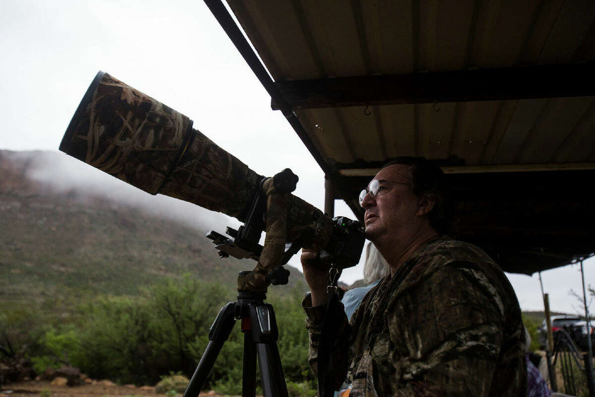 Noel Ice, a tax lawyer from Fort Worth, waits for a Lucifer Hummingbird to visit a bird feeder during a morning trip in the Christmas mountains nearby the Big Bend National Park Friday, August 19, 2016. The trip was part of a three day excursion with the Davis Mountain Hummingbird Festival in which roughly 80 birders flocked to Fort Davis.