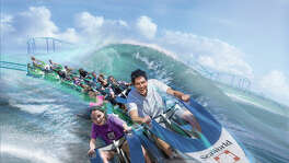 """Wave Breaker: The Rescue Coaster,"" which is intended to simulate animal rescue operations, is slated to open at SeaWorld San Antonio in summer 2017."
