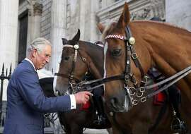 LONDON, UNITED KINGDOM - SEPTEMBER 25: Prince Charles, Prince of Wales meets mounted police officers and their horses after the the National Police Memorial Service at St Paul's Cathedral on September 25, 2016 in London, England. (Photo by Neil Hall - WPA Pool/Getty Images)