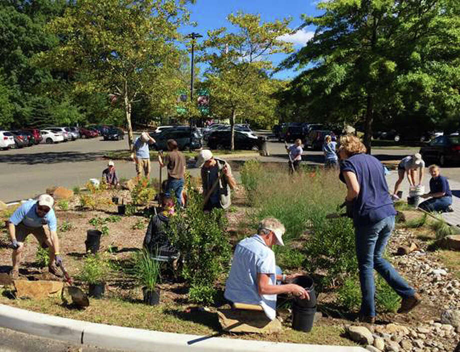 Volunteers with Save the Sound help build a rain garden to capture storm water run off at the Beardsley Zoo on Saturday, Sept. 24, 2016. Photo: Contributed Photo