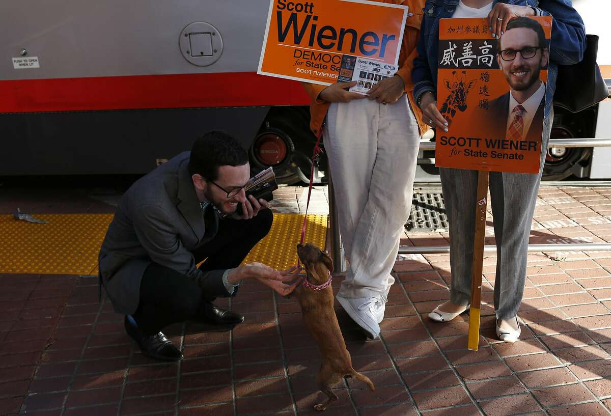 Supervisor Scott Winer greets Doggie The Dog as its owner Forge Toro, left center, talks with Beatrice Cardenas-Duncan while Wiener campaigns at the West Portal Muni stop Sept. 23, 2016 in San Francisco, Calif.
