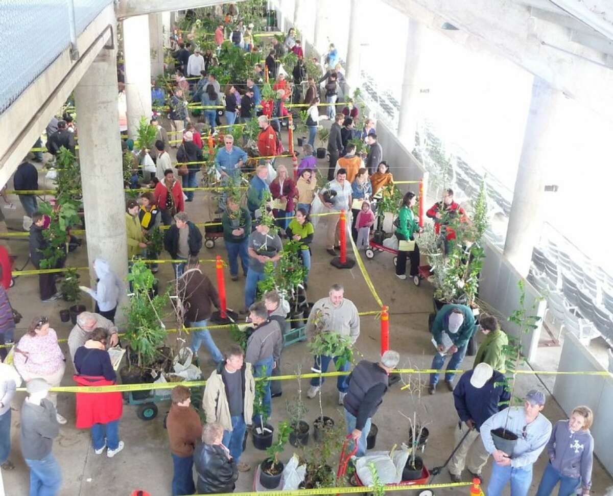 Photo of a previous Urban Harvest Fruit Tree Sale.