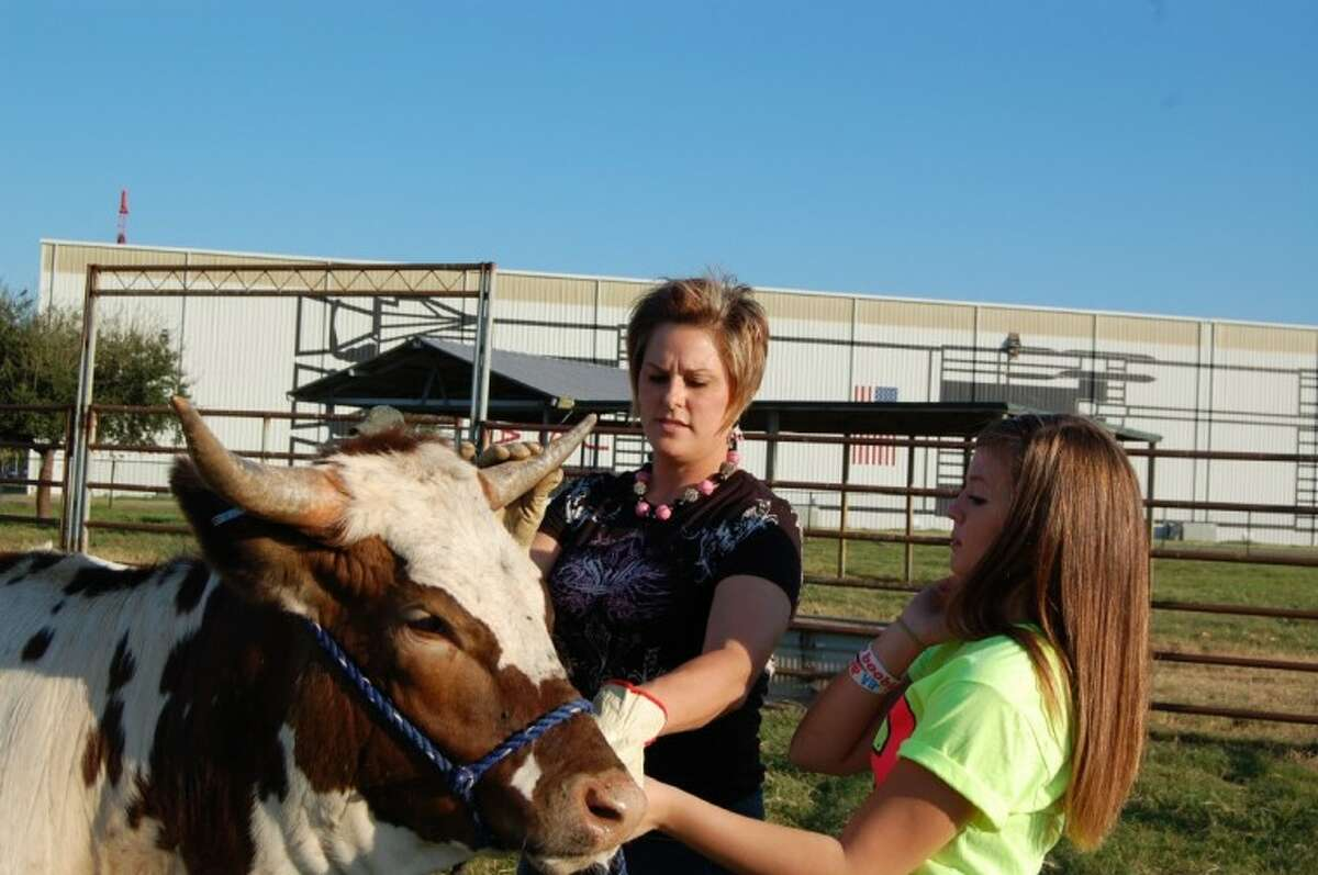 The Clear Creek Independent School District is proud to announce the 29th Annual Livestock Show and Auction. Please join us at the Clear Creek ISD Agricultural Event Center located at 2155 West NASA Parkway in League City on Thursday, January 27. Buyer registration begins at 4:45 p.m. Dinner and entertainment begins at 5 p.m. with the Livestock Auction at 7 p.m. Pictured are CCISD's new CASE manager Jennifer Emshoff helping 11th Grader Kimberly Lott position her animal in the practice ring.