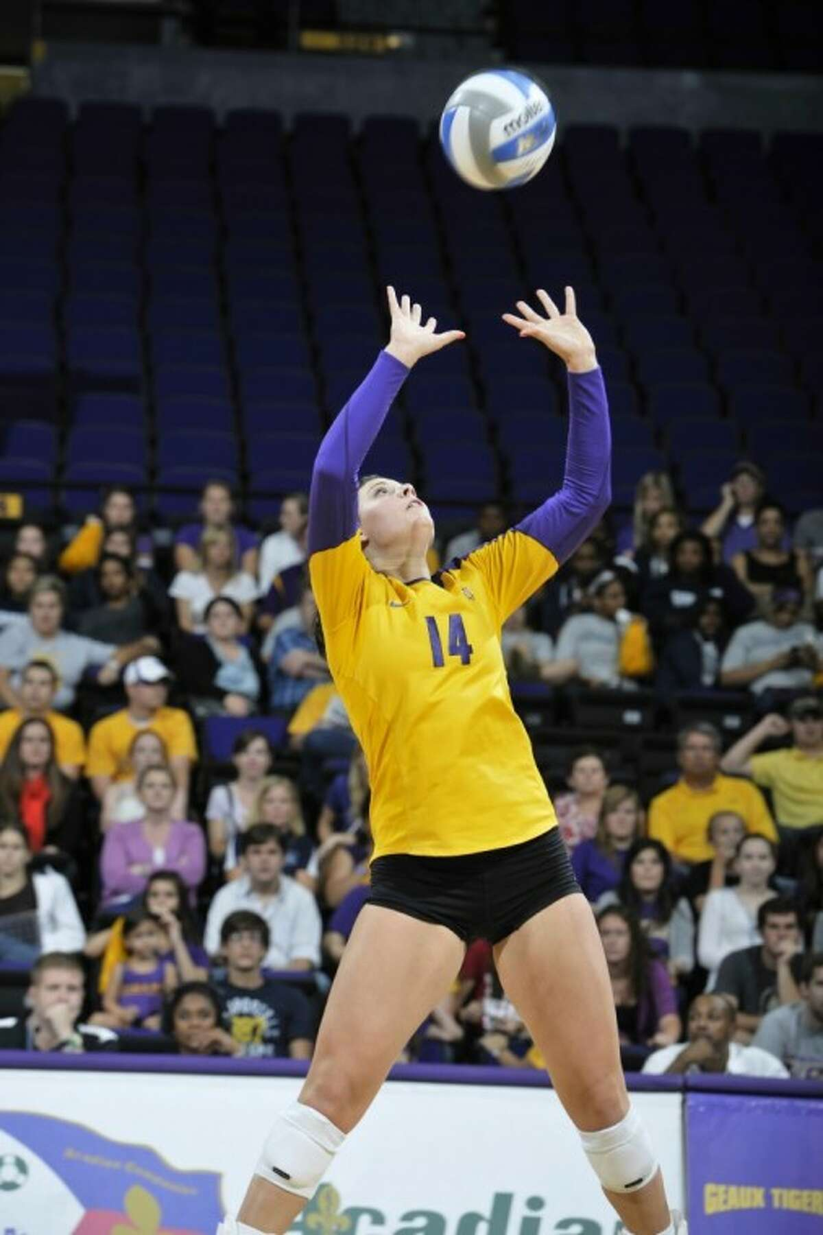 Pearland product Malorie Pardo sets the ball for her LSU teammates in a game this past fall. Pardo recently completed her freshman season for the Lady Tigers.