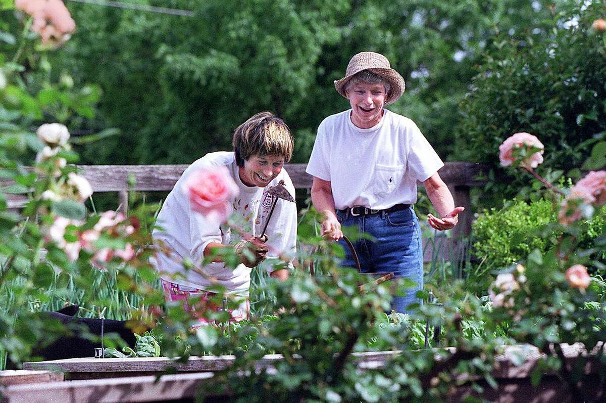 SPOTTSWOODE 5/C/29APR97/FD/CS - Daughter Kelley and mother Mary Novak work in the vegetable garden of Mary's home at the Spottswoode Winery in St. Helena. SAN FRANCISCO CHRONICLE PHOTO BY CHRIS STEWART