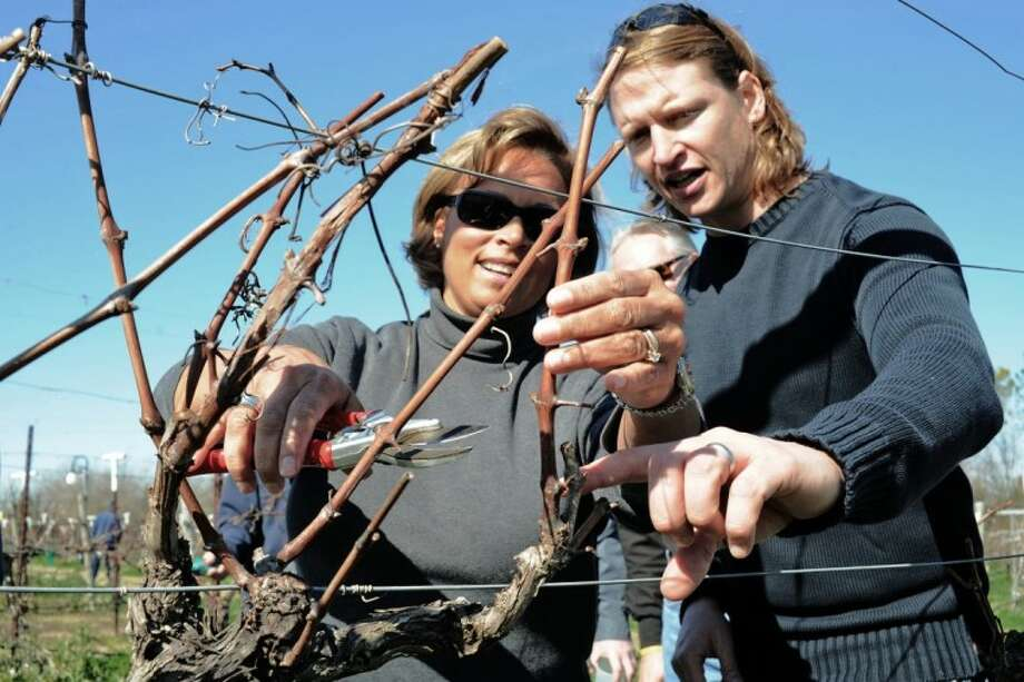 Fay Milton receives hands-on instruction as Texas Department of Agriculture Texas Gulf Coast Viticultural Advisor Frtiz Westover explains the proper procedure for pruning grapevines at the Haak Winery in Santa Fe Saturday, Jan. 14.