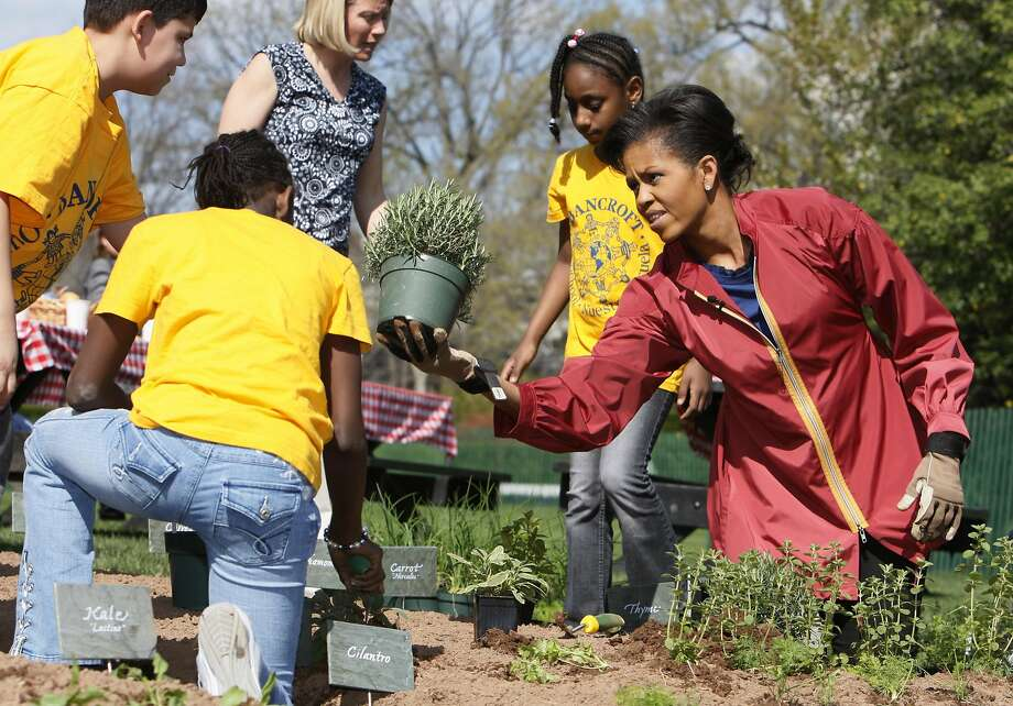 April 2009: Michelle Obama plants the Kitchen Garden on the South Lawn of the White House with students. Photo: Charles Dharapak, AP