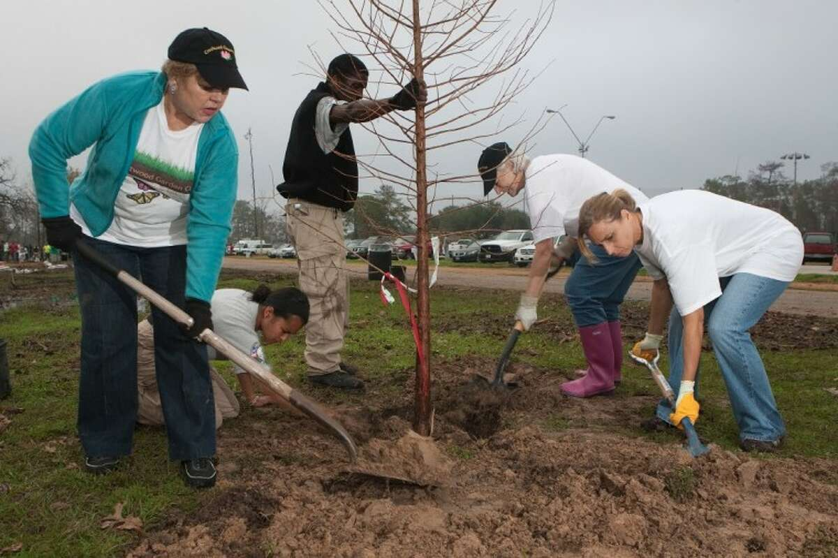 Volunteers from the Crestwood Garden Club were among the crew helping to re-plant Memorial Park on Arbor Day Saturday.