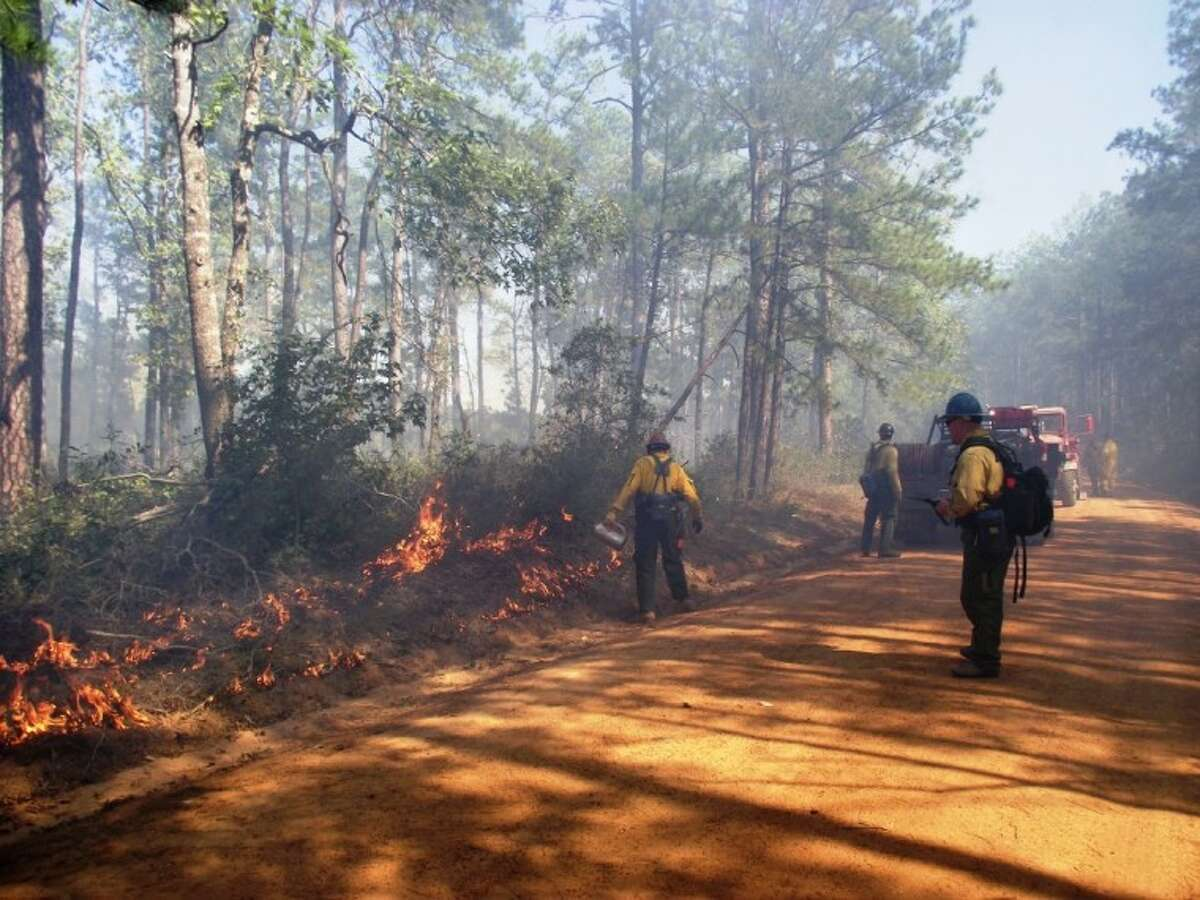 U.S. Forest Service fire personnel have begun controlled burns in the national forests and will continue the burns during the next few months.