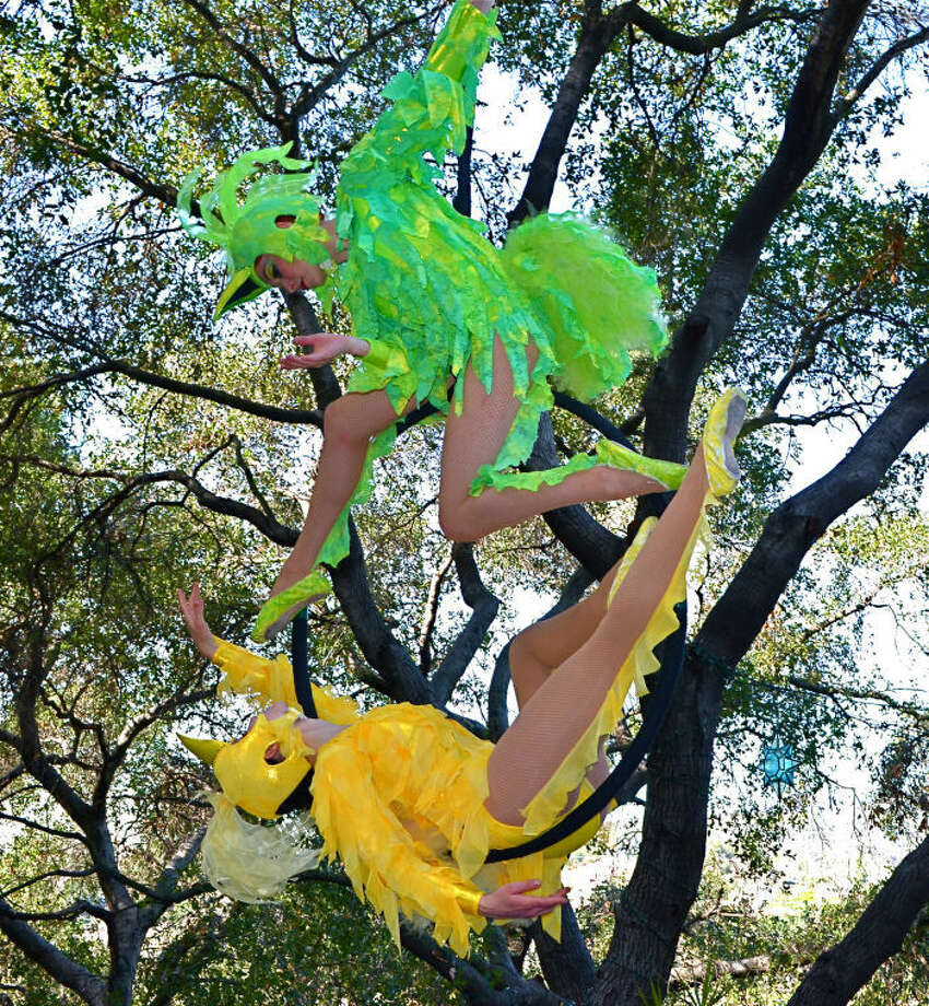 "The ""Feathers in Flight"" aerialist show is one of several nature-themed acts scheduled for Bridgeland's annual Nature Fest, set for 10 a.m. to 5 p.m. April 27. Guinness World Records will be on hand during the popular event to see if attendees can break a record for the most people giving a simultaneous bird call."