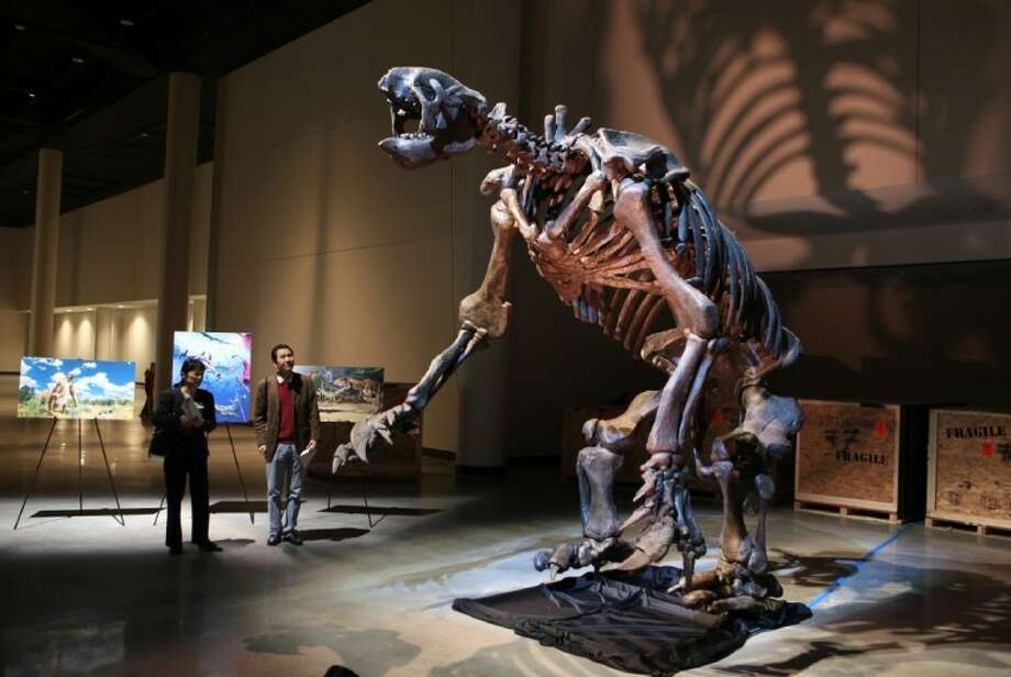 """Slothzilla"" one of the largest mounted skeletons of a giant ground sloth that is about 30,000 years old from North Carolina that will be on display in the new paleontology hall that will be opened at the Houston Museum of Natural Science this summer."