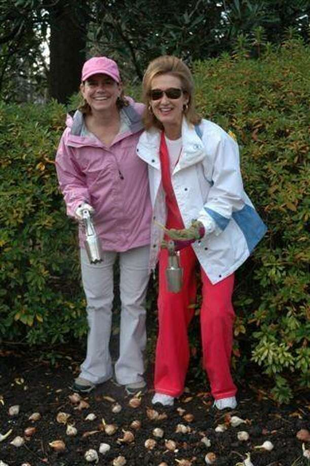 Provisional members of the River Oaks Garden Club planted thousands of tulip bulbs at Bayou Bend Collection and Gardens as part of preparations for the annual Azalea Trail. This year's event is March 5-7.