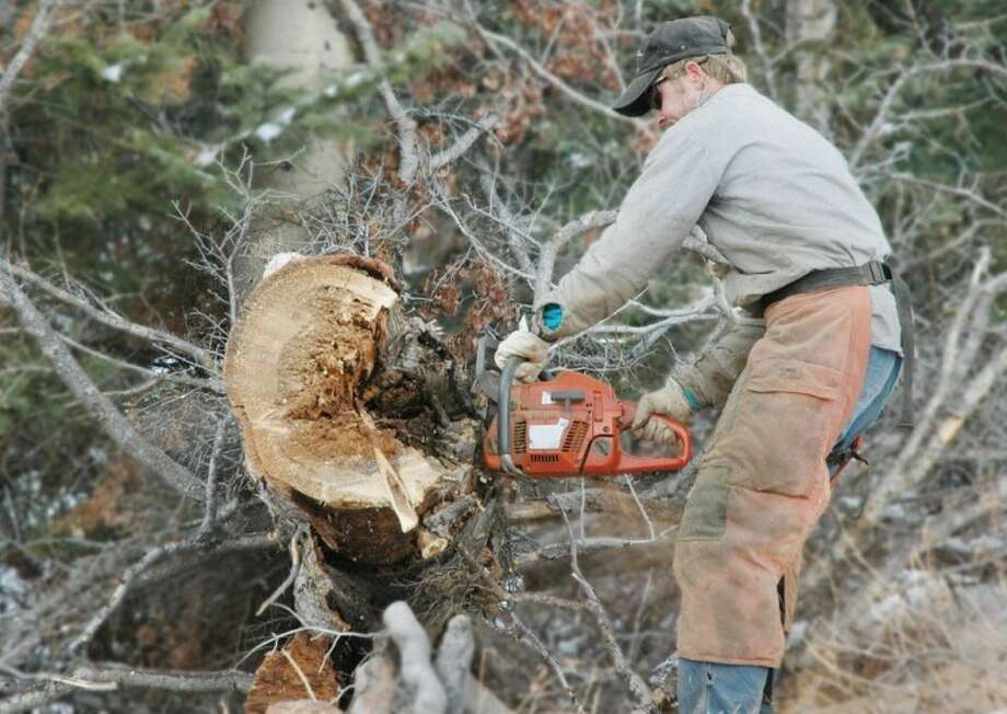 In a typical year, Sam Houston Electric Cooperative says its crews must take down 17,000 dead trees along its 6,000 miles of electric distribution lines. This year, SHECO reports that number is expected to be more than four times that number due to the record-breaking drought and forest fires in 2011. Photo: File Photo