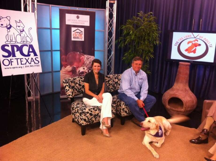 Lacy Ball and James Bias, president of the SPCA, enjoy their appearance on For the Love of Dogs TV.