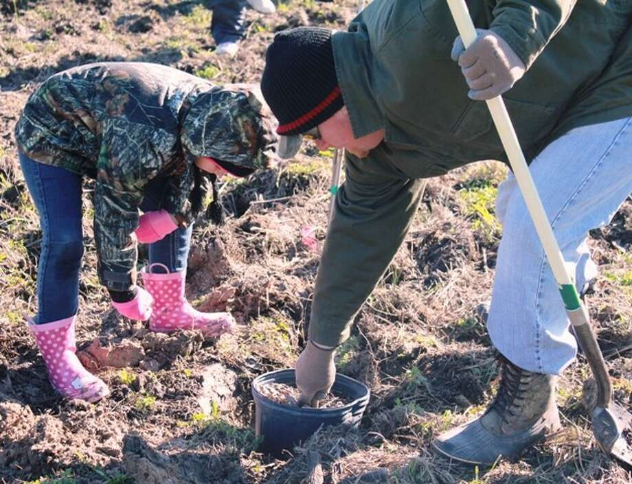 Volunteers of all ages learned the art of correctly planting a tree at the Texas Urban Forestry Council's 2012 Arbor Day Tree Planting Competition sponsored by the Houston Area Urban Forestry Council and the Harris County Flood Control District. More than 130 volunteers donated time and sweat equity to plant 1,300 trees on a Flood Control District stormwater detention basin site in less than two hours. (Photo submitted by Harris County Flood District)